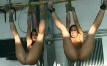 Hung Up Like A Fleshy Toy To Use