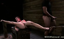 Tied to a crate and spread brunette Stella May roughly