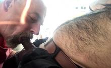 Dad Sucking Hairy Cub